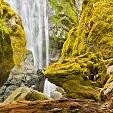 Umpqua National Forest壁紙の画像(壁紙.com)
