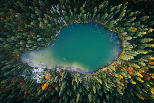 National Park「Scenic view of forest and lake from aerial perspective」:スマホ壁紙(16)