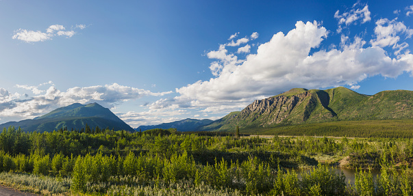 Boreal Forest「Scenic view of near Kluane Lake, Yukon Territory, Canada, Summer」:スマホ壁紙(15)