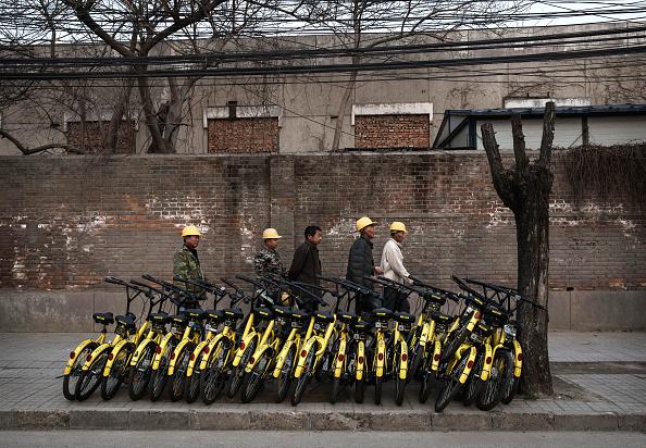 Big Data「Beijing's Bike Share Boom Creates Refuge for Battered Bicycles」:写真・画像(8)[壁紙.com]