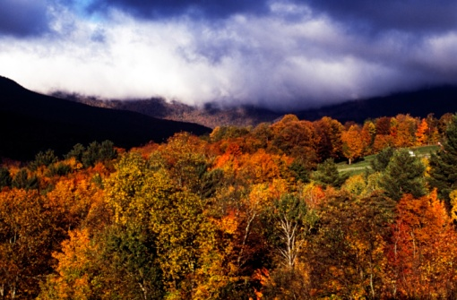Stowe - Vermont「View of autumn colored trees in Stowe, Vermont, New England, USA」:スマホ壁紙(17)