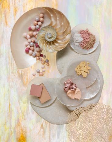 サンゴ「Shells with Make Up」:スマホ壁紙(1)