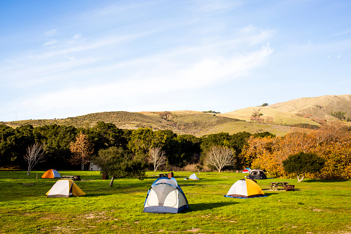 Big Sur「Camping tents in remote grassy field」:スマホ壁紙(16)