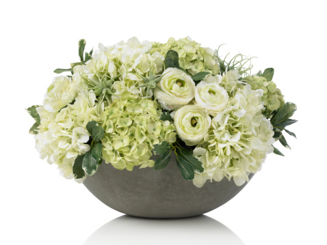 Flower Arrangement「大きなアジザイブーケのコンクリートのボウルに白背景」:スマホ壁紙(3)