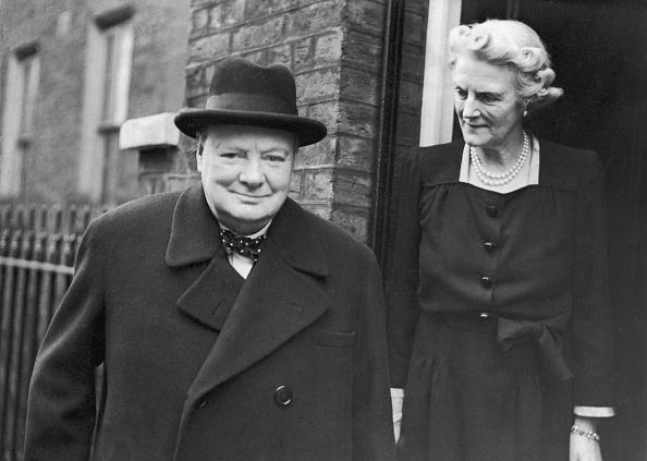 Orange - Fruit「Churchill At 71」:写真・画像(4)[壁紙.com]