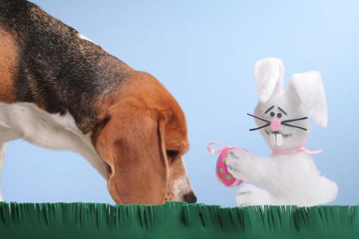 質感「Easter Egg Hunting」:スマホ壁紙(8)