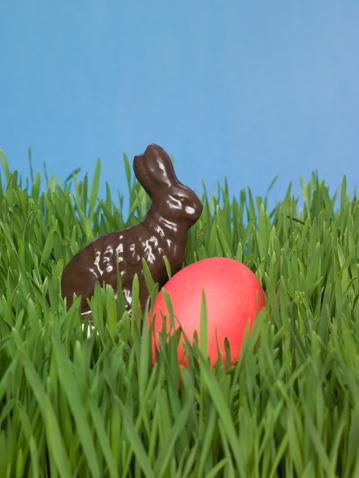 Easter Bunny「Easter egg and easter bunny」:スマホ壁紙(13)