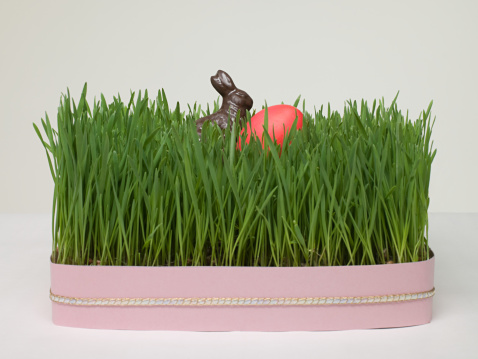 Easter Bunny「Easter egg and easter bunny in grass」:スマホ壁紙(5)