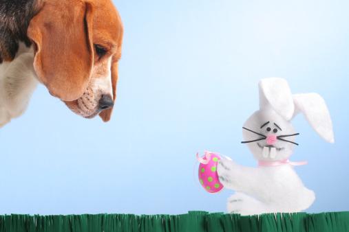 質感「Easter Egg Hunter」:スマホ壁紙(7)