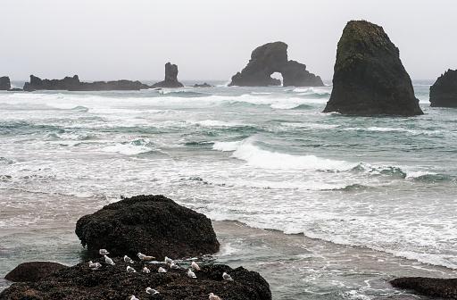 Cannon Beach「Winter weather comes to the Oregon coast」:スマホ壁紙(8)