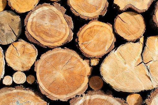 Tree Ring「Woodstack Background」:スマホ壁紙(19)