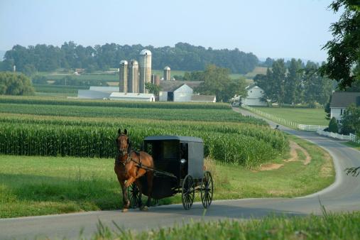 Horse「Amish Farm Land」:スマホ壁紙(1)