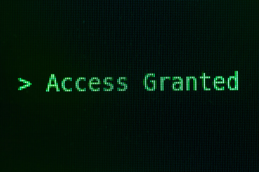 Computer Crime「Access granted message in green」:スマホ壁紙(19)