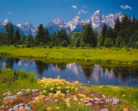 Grand Teton「Spring at the Tetons (P)」:スマホ壁紙(11)