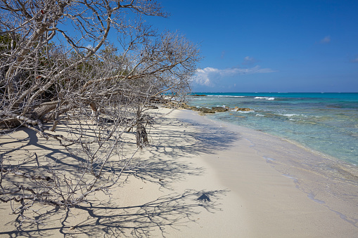 cloud「The deserted pristine shoreline on a remote Caribbean island.」:スマホ壁紙(15)