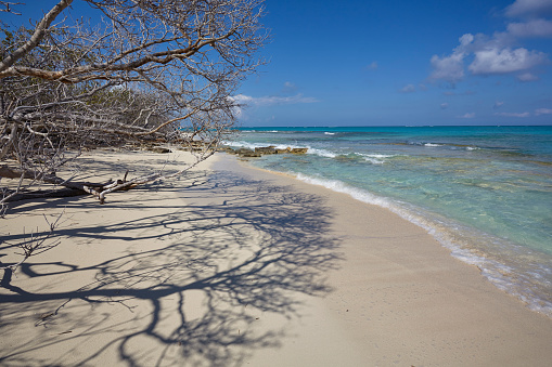 cloud「The deserted pristine shoreline on a remote Caribbean island.」:スマホ壁紙(10)