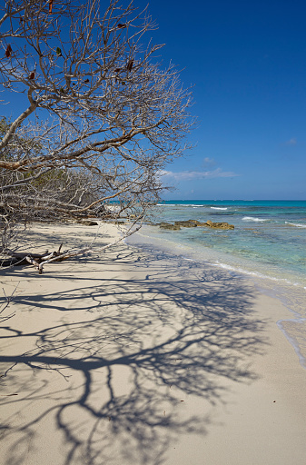 cloud「The deserted pristine shoreline on a remote Caribbean island.」:スマホ壁紙(9)