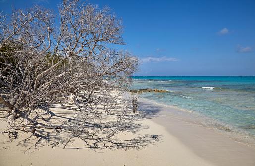 cloud「The deserted pristine shoreline on a remote Caribbean island.」:スマホ壁紙(18)