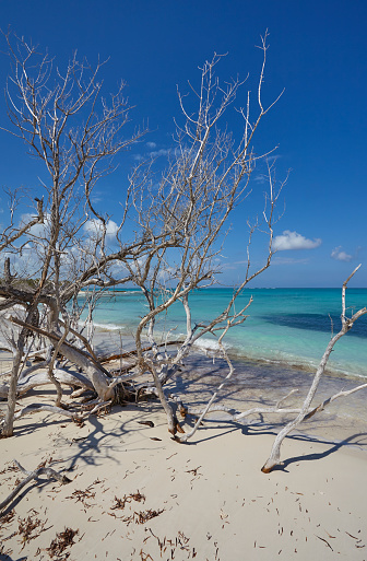 cloud「The deserted pristine shoreline on a remote Caribbean island.」:スマホ壁紙(14)