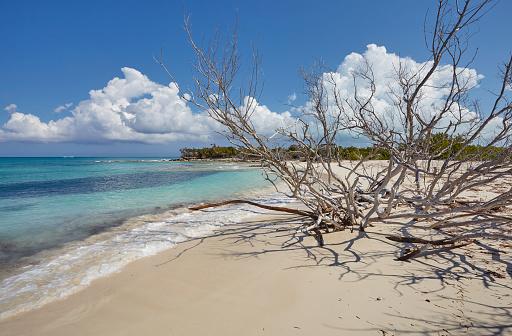 cloud「The deserted pristine shoreline on a remote Caribbean island.」:スマホ壁紙(5)