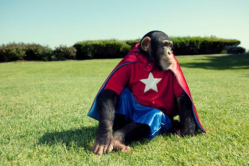 画像加工フィルタ「スーパー Chimp」:スマホ壁紙(17)