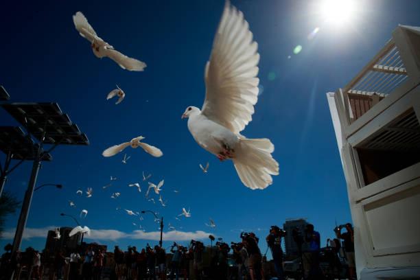 Drew Angerer「Las Vegas Mourns After Largest Mass Shooting In U.S. History」:写真・画像(12)[壁紙.com]