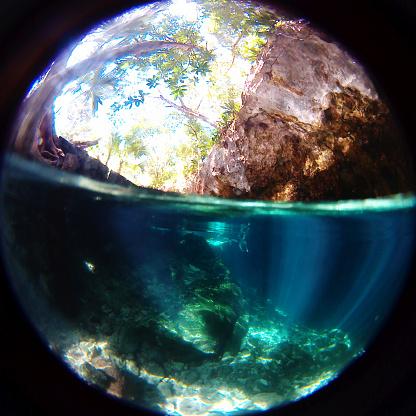 Unrecognizable Person「Swimming in a cenote」:スマホ壁紙(13)