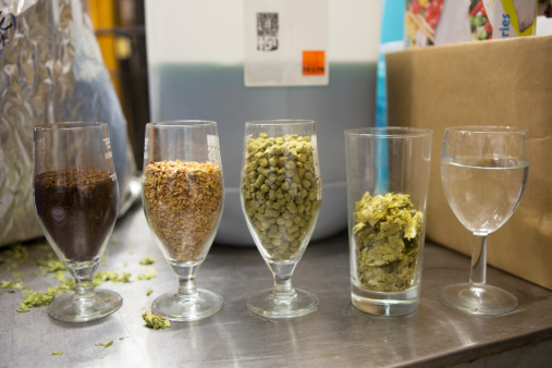 Microbrewery「different grains and hops in a micro brewery」:スマホ壁紙(17)