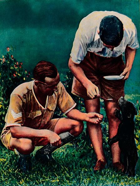 Bending「A Singapore Mascot of the RAF, 1940.」:写真・画像(5)[壁紙.com]