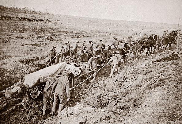 Horse「Pulling A Big Gun With A Twelve Horse Team And The Help Of The Gun Crew France World War I 1916」:写真・画像(13)[壁紙.com]