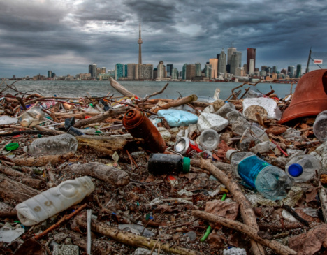 Ugliness「Garbage washed ashore on Ward Island, Toronto 」:スマホ壁紙(3)