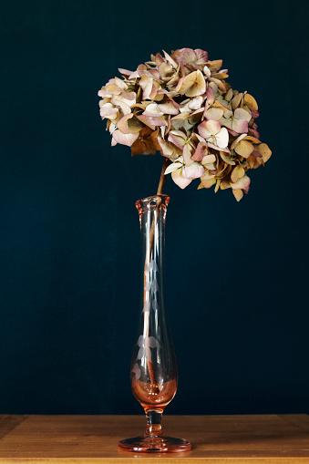 あじさい「Wilted Hydrangea in vase」:スマホ壁紙(10)