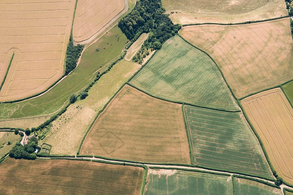 Agricultural Field「Prehistoric Farms」:写真・画像(6)[壁紙.com]