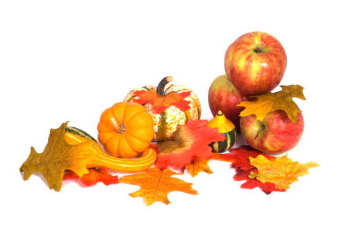 Gourd「Autumnal Arrangement Centerpiece Display Pumpkin, Gourds,Apples,Leaves」:スマホ壁紙(14)