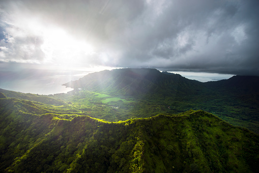 United States Minor Outlying Islands「Aerial of Tropical rainforest, Hawaii」:スマホ壁紙(7)
