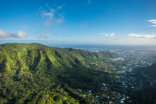 United States Minor Outlying Islands「Aerial of Tropical rainforest, Hawaii」:スマホ壁紙(6)