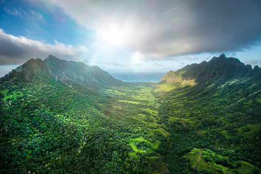 Hawaii Islands「Aerial of Tropical rainforest, Hawaii」:スマホ壁紙(9)