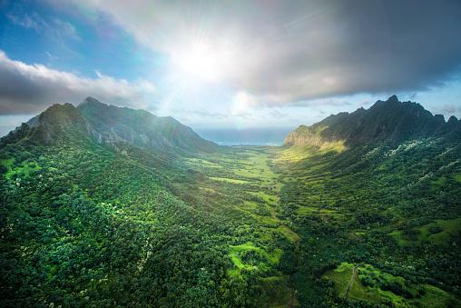 Oahu「Aerial of Tropical rainforest, Hawaii」:スマホ壁紙(1)