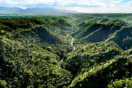 Dramatic Landscape「Aerial of Tropical rainforest, Hawaii」:スマホ壁紙(1)