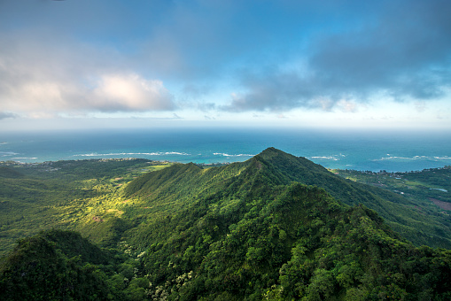 Rainforest「Aerial of Tropical rainforest, Hawaii」:スマホ壁紙(19)