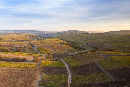 Loire Valley「Aerial of the vineyards of Sancerre, France.」:スマホ壁紙(8)