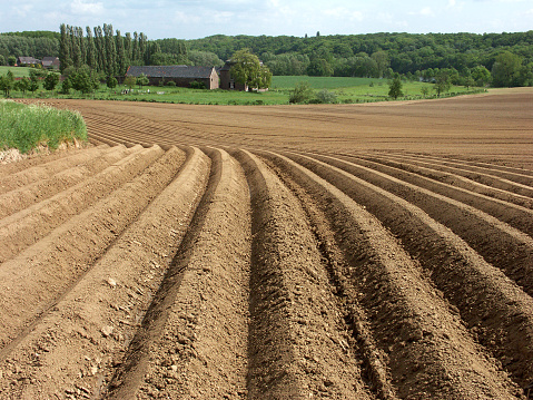 Planting「Ploughed farmland with furrows,ready for crops in springtime」:スマホ壁紙(17)