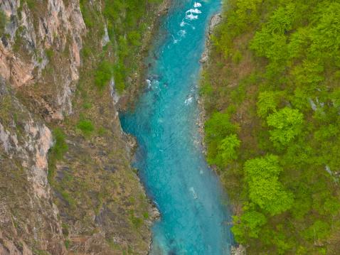 Dizzy「Tara river」:スマホ壁紙(9)