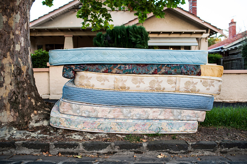 Deciduous tree「bed mattresses left out for collection on suburban street」:スマホ壁紙(18)