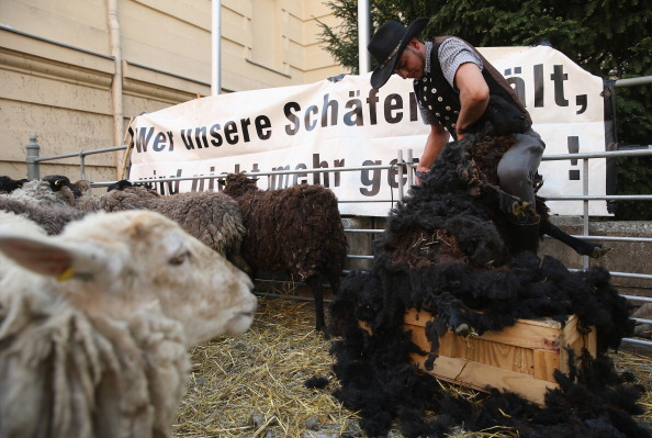 Government Subsidy「Shepherds Protest For More State Support」:写真・画像(15)[壁紙.com]