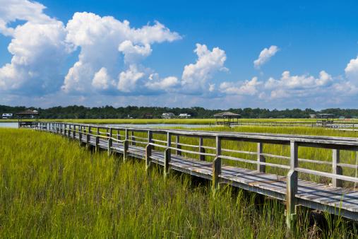 Marsh「Boardwalk to Boat Dock in Salt Marsh」:スマホ壁紙(14)