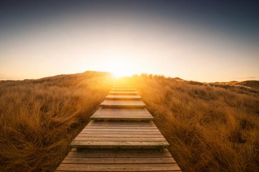 小道「ボードウォークの砂丘」:スマホ壁紙(7)
