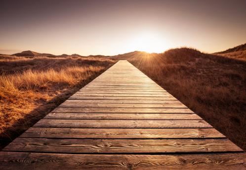 Footpath「Boardwalk through the dunes」:スマホ壁紙(0)