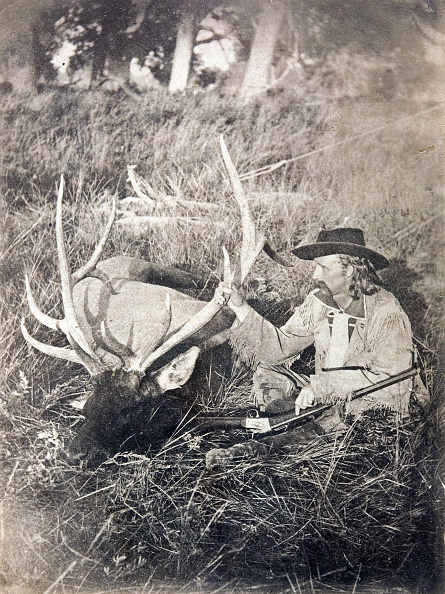 Red Deer - Animal「Elk Killed On Mussel Shell River Montana」:写真・画像(17)[壁紙.com]