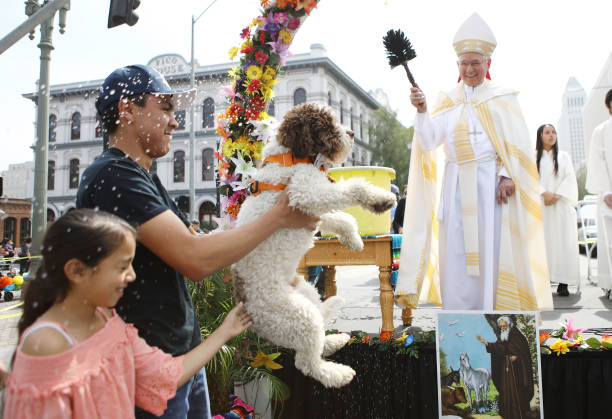 L.A. Archbishop Jose Gomez Leads Annual Blessing Of The Animals:ニュース(壁紙.com)